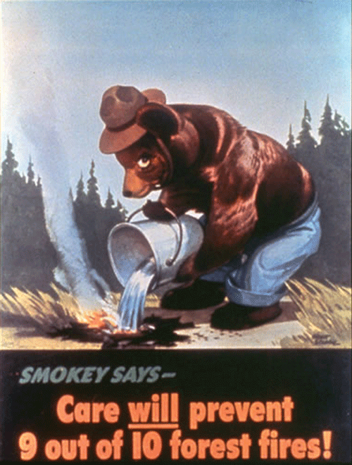 Take the Advice of Smokey Bear and Be Fire Wise with Your Campfire!