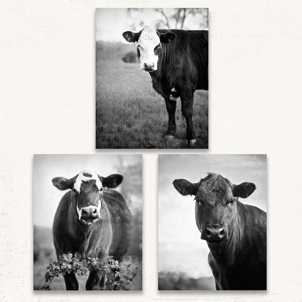 Adventuring Cows Print Set of Three - Black and White Version