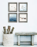 Beige and Blue Beach Set of Four