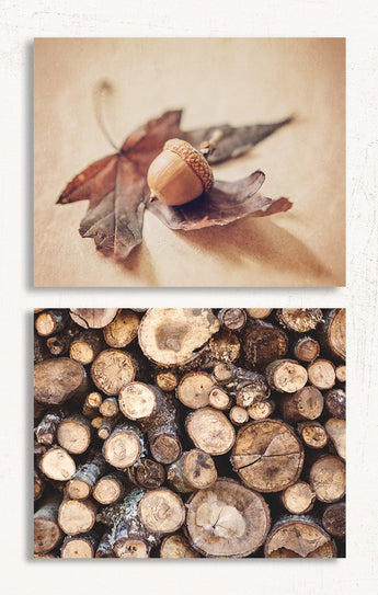 Autumn Acorn Print Set of Two