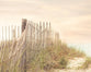 Boundary Lines - Rustic Beach Decor