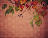 Brick Red - Fall Wall Decor