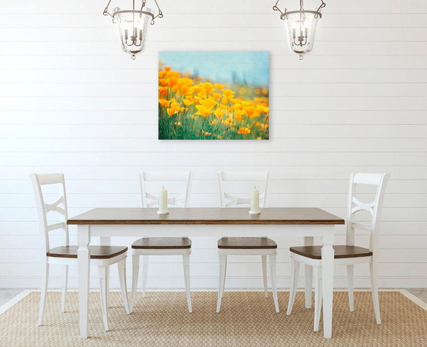 California Poppies - Orange Wall Art for your Rustic Farmhouse