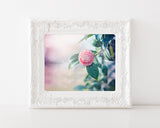 Camellia - Shabby Chic Wall Decor