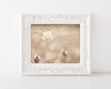 Cotton Cottage - Farmhouse Chic Wall Art