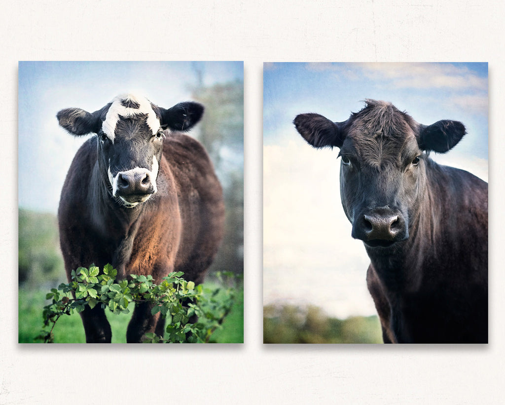 Cow Print Set of Two - Dottie & Daisy