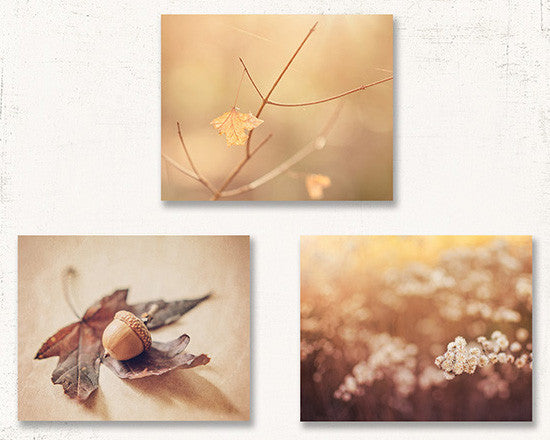 Autumn Acorn Print Set of Three