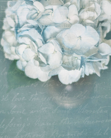 French Blue Hydrangeas - Shabby Chic Wall Decor