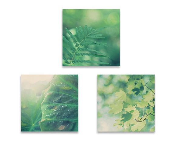 Set of Three Square Prints in Green Tones