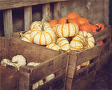 Harvest Time - Fall Wall Art