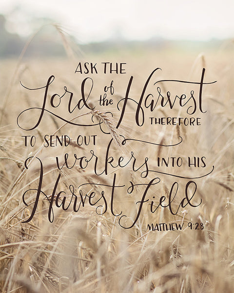 Lord of the Harvest - Bible Verse Wall Art