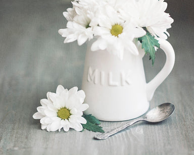 Milk Paint - Daisy Wall Art for your Farmhouse Decor