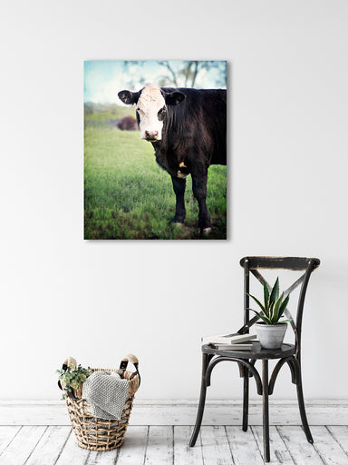 Miss Dixie - Farm Wall Art