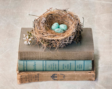 Nesting Phase - Bird's Nest Wall Art for your Rustic Farmhouse Decor