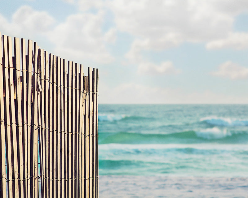 On the Fence - Beach Wall Art