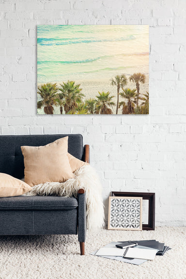 Palm Trees in Panama - Tropical Wall Art for your Beach Decor