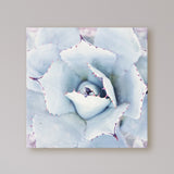 Powder Me Blue - Modern Cactus Wall Art