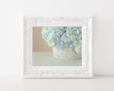 Powder Blue Butterflies - Shabby Chic Decor