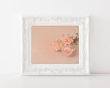 Pretty in Peach - Shabby Chic Wall Art