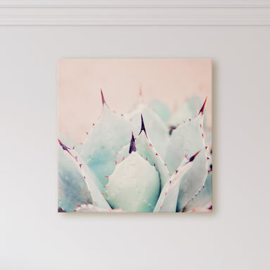 Prickly Pastels - Modern Cactus Wall Art