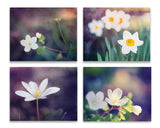 Purple Flower Wall Art Set