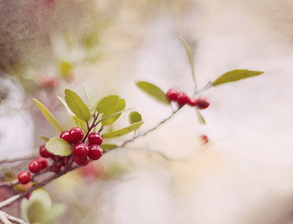 Red Berries - Fall Wall Decor