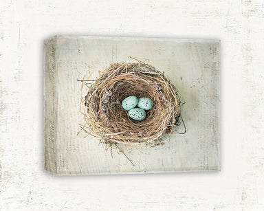 Robin's Eggs - Nest Wall Art for your Rustic Farmhouse Decor