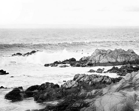 Rocky Shores - Black and White Coastal Wall Art for your Beach Decor