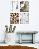 Rustic Alpine Set of Four