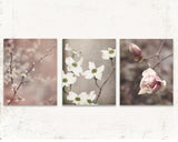 Rustic Blooms Set of Three Prints