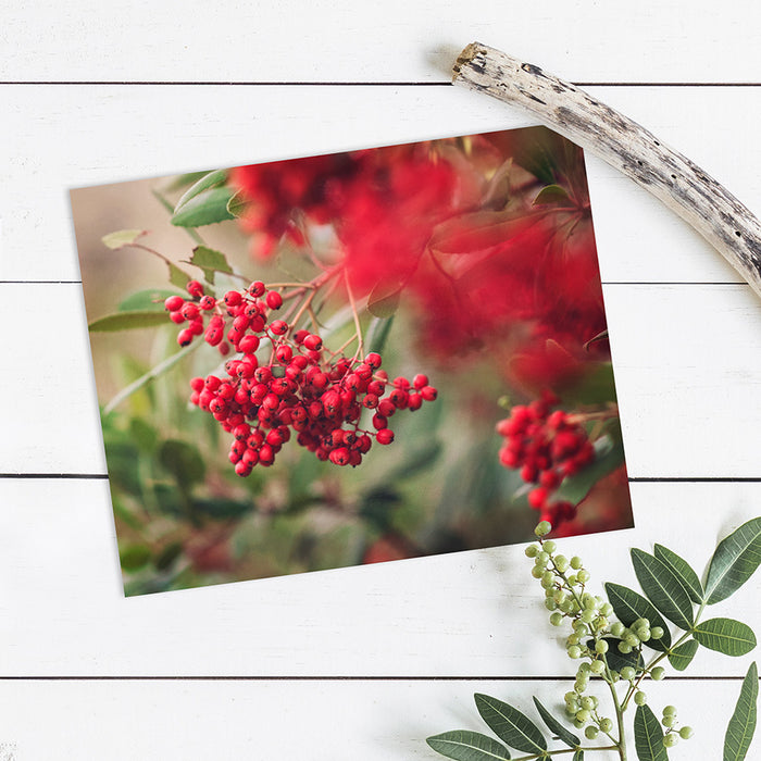Rustic Red Berries - Farmhouse Christmas Wall Decor