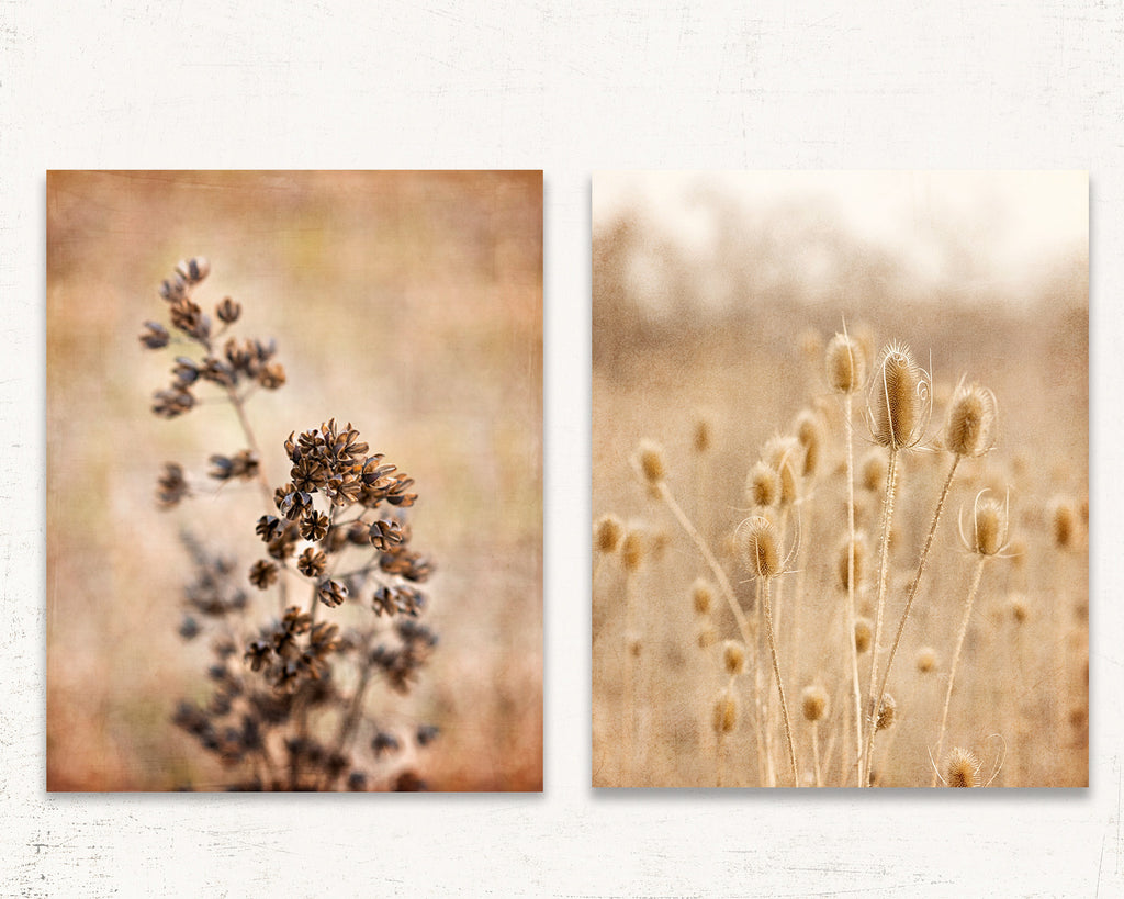 Rustic Thistles Set of Two