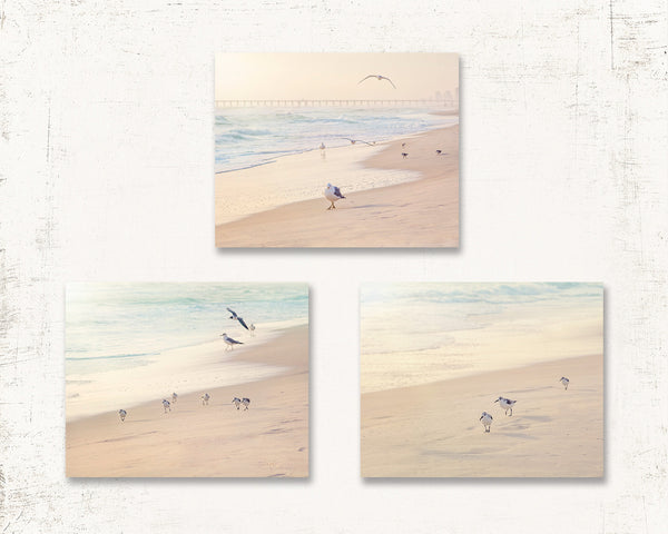 Sea Birds Print Set of Three
