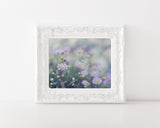 Serenity - Purple Shabby Chic Wall Art