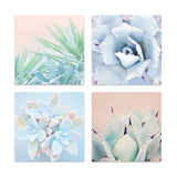 Set of Four Succulent Prints