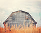 Shuttered - Weathered Barn Photo for your Modern Farmhouse