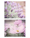 Soft Purple Flowers Print Set of Two