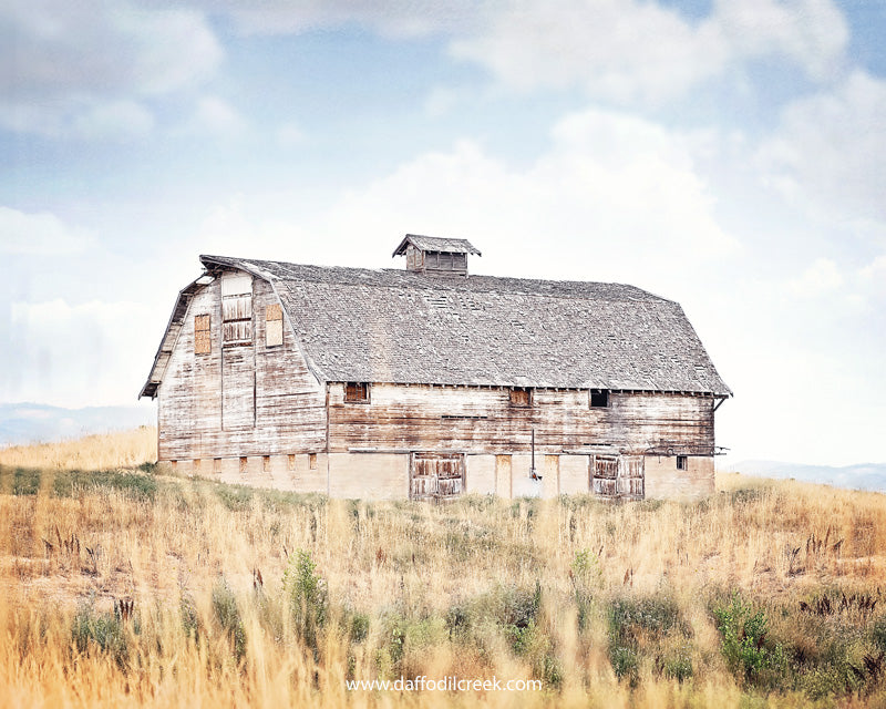 Stonewashed - White Barn Photo for your Farmhouse Decor
