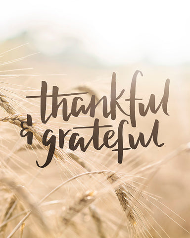 Thankful & Grateful - Rustic Thanksgiving Wall Art
