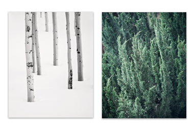 Evergreen Winter Set of Two Rustic Prints