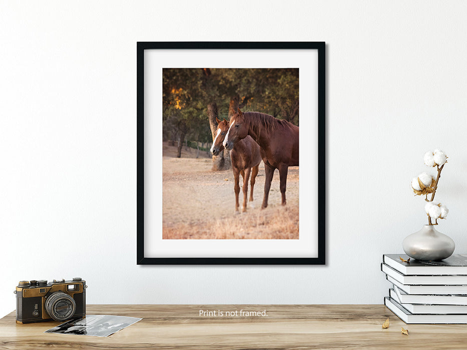 Two Redheads - Equestrian Wall Art for your Rustic Western Decor
