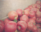 Fresh Apples - Country Kitchen Wall Decor