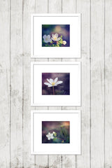 Faith, Hope, Love - Inspirational Wall Art Set