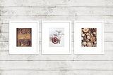 Rustic Laundry Room Print Set of Three