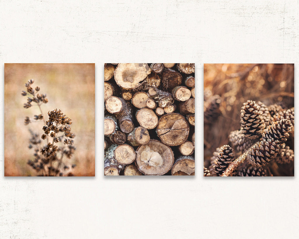 Rustic Cabin Print Set of Three