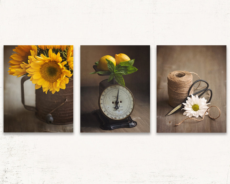 Rustic Kitchen Wall Art Set of Three in Yellow and Brown