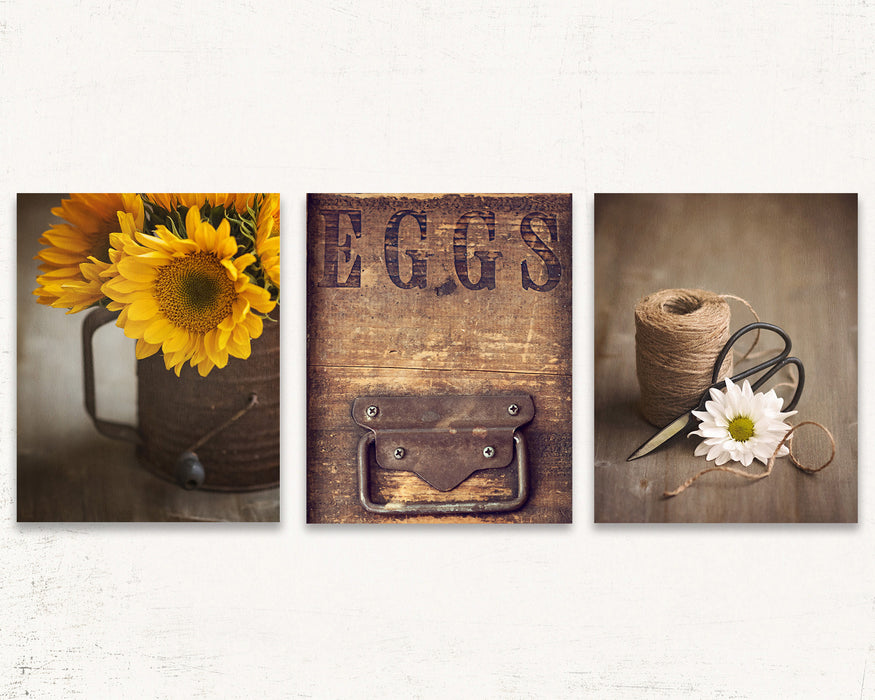 Country Decor Set of Three