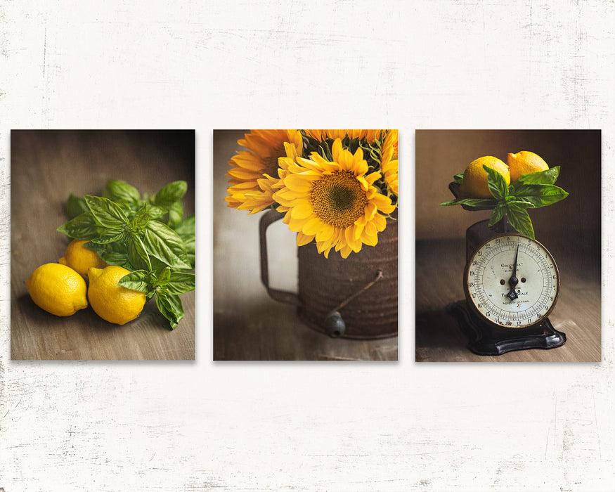 Yellow Country Kitchen Wall Decor Set Of Three Daffodil Creek