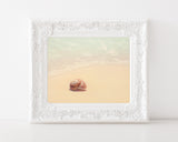 Out of My Shell - Vintage Beach Wall Art