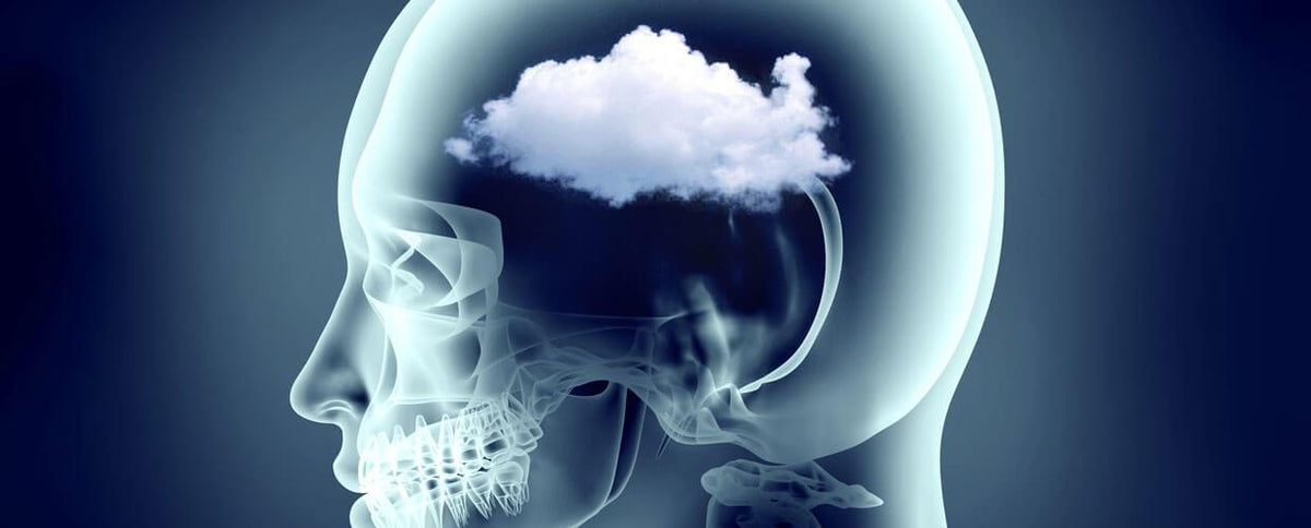 How to Clear Up Brain Fog (and Improve Your Training in the Process)